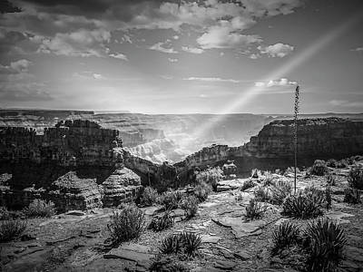 Eagle Rock, Grand Canyon In Black And White Art Print