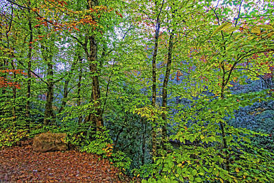 Photograph - Early Autumn In The Nantahala by HH Photography of Florida