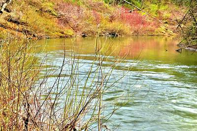 Photograph - Early Spring Yamhill River by Jerry Sodorff