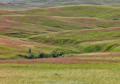 Photograph - East Montana Grasslands by Leland D Howard