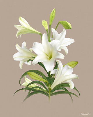 Digital Art - Easter Lily by M Spadecaller