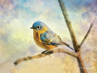 Digital Art - Eastern Bluebird On A Bluebird Day by Lois Bryan