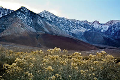 Photograph - Eastern Sierra Magic Hour by Kyle Hanson