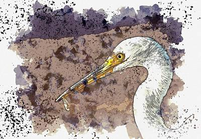 Bringing The Outdoors In - Egret 2    watercolor by Adam Asar by Adam Asar