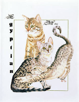 Drawing - Egyptian Mau by Barbara Keith