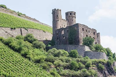 Photograph - Ehrenfels Castle by Paul Croll