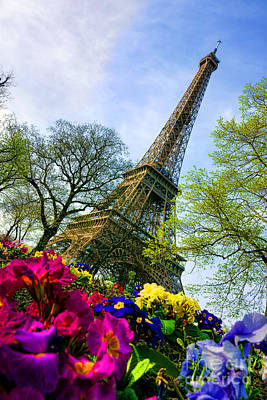 Photograph - Eiffel Tower In Bloom by Olivier Le Queinec