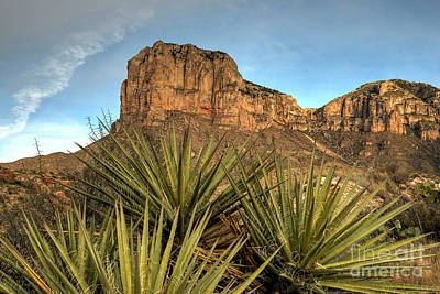 Photograph - El Capitan Of Texas by Joe Sparks