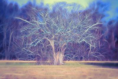 Photograph - Electric Branches by Karen Silvestri