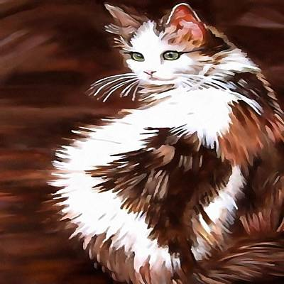 Painting - Elegant Long Haired Bi-colored Cat by Taiche Acrylic Art