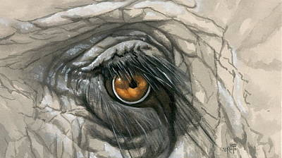 Painting - Elephant Eye by Barbara Keith