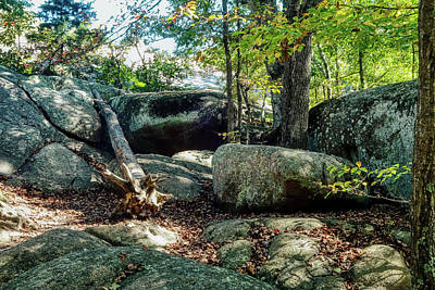 Outerspace Patenets Rights Managed Images - Elephant Rocks Study 9 Royalty-Free Image by Robert Meyers-Lussier