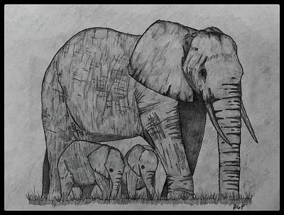 Animals Drawings - Elephants W/ Border by Michael Panno
