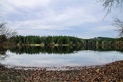 Photograph - Elk/beaver Lake by Perggals - Stacey Turner