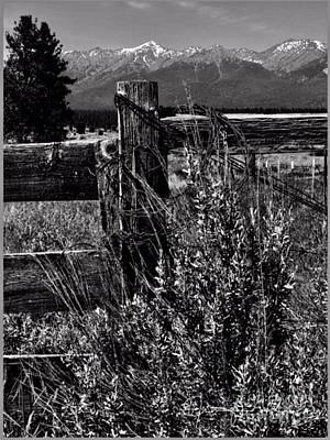 Photograph - Elk Horn Mountain West by Jennifer Lake