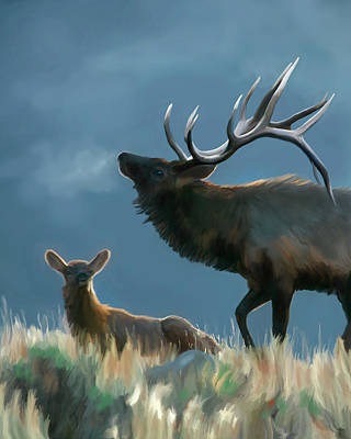 Digital Art - Elk On An Autumn Morning by Mark Miller