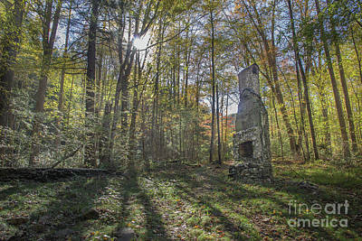 Abandoned Elkmont Wall Art - Photograph - Elkmont Chimney Remains 11 by Mike Eingle