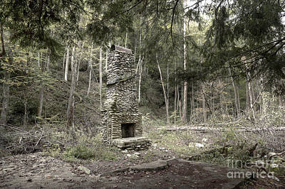 Abandoned Elkmont Wall Art - Photograph - Elkmont Chimney Remains 14 by Mike Eingle