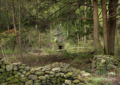 Abandoned Elkmont Wall Art - Photograph - Elkmont Chimney Remains 15 by Mike Eingle