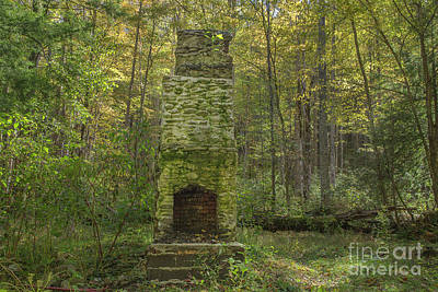 Abandoned Elkmont Wall Art - Photograph - Elkmont Chimney Remains 6 by Mike Eingle