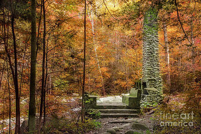Abandoned Elkmont Wall Art - Photograph - Elkmont Chimney Remains by Mike Eingle