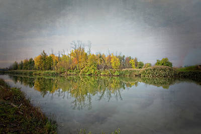 Photograph - Ellicott Creek Reflections by Guy Whiteley