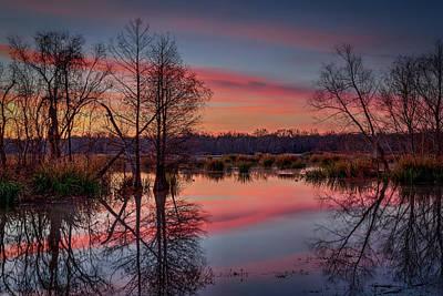 Photograph - Elm Lake 2 by David Heilman