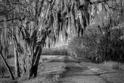 Photograph - Elm Lake 4 by David Heilman