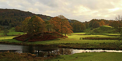 Ambleside Wall Art - Photograph - Elterwater Trees by Photography By Linda Lyon