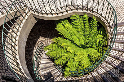 Photograph - Embarcadero Stairway by Kate Brown