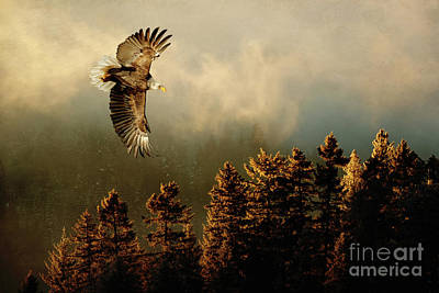 Photograph - Embracing Nature by Beve Brown-Clark Photography