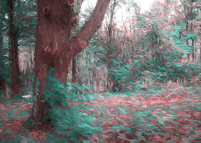 Digital Art - Emmaus Community Park Trail With Large Tree by Jason Fink