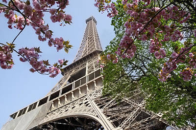 Photograph - Enchanting Paris In The Springtime by Rosemary Calvert