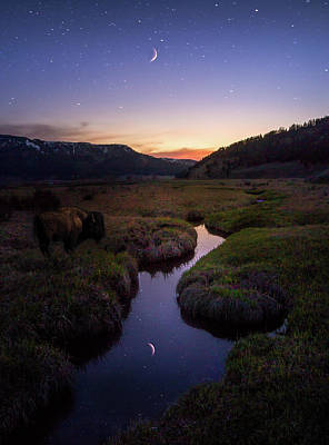 Photograph - Enchanting Yellowstone / Yellowstone National Park  by Nicholas Parker