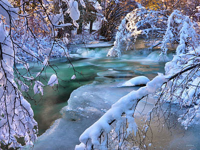 Photograph - Enchantment Of Winter by Leland D Howard