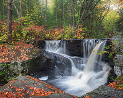 Photograph - Enders Falls Autumn 2 by Bill Wakeley