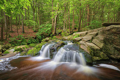 Photograph - Enders State Forest Falls by Juergen Roth