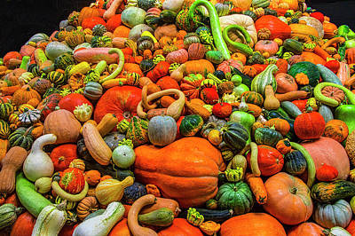 Photograph - Endless Autumn Gourds by Garry Gay