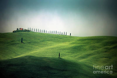Royalty-Free and Rights-Managed Images - Endless Hills by Evelina Kremsdorf