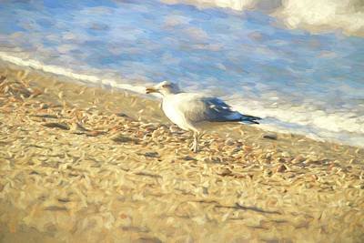 Photograph - Enjoying The Winter Beach by Karen Silvestri