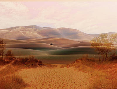Mixed Media - Entrance To The Moroccan Desert Montage by Clive Littin