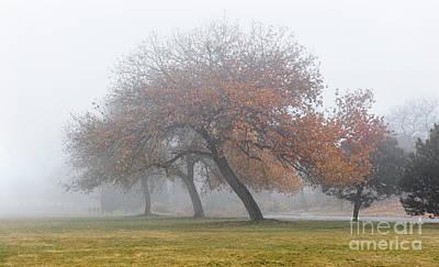 Photograph - Enveloping Fog by Susan Warren