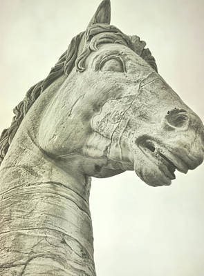 Photograph - Equine Artistry by JAMART Photography