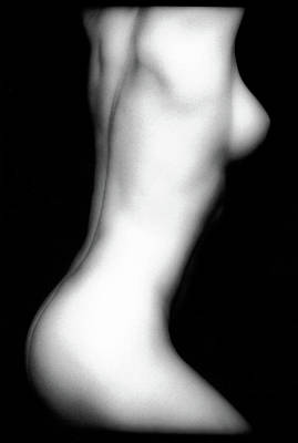 Nudes Royalty-Free and Rights-Managed Images - Ericas Torso by Lindsay Garrett