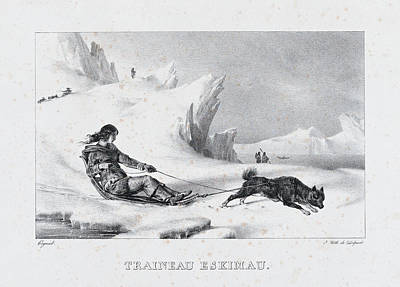 Drawing - Eskimo Sled by Leon Cogniet