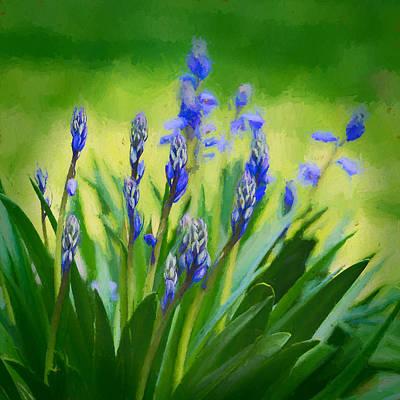 Nature Photograph - Essense Of Spring by Kristi Swift