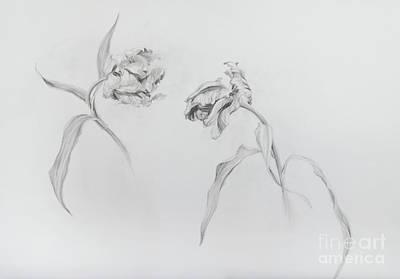 Drawing - Estella Rijnveld Three by Odile Kidd