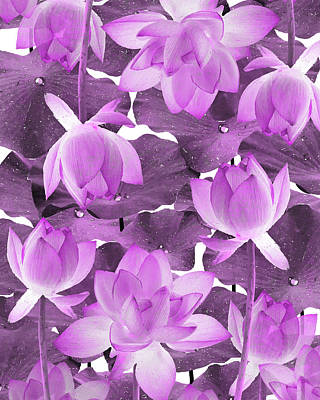 Royalty-Free and Rights-Managed Images - Ethereal Purple Lotus Flower - Tropical, Botanical Art - Purple Water Lily - Lotus Pattern - Violet by Studio Grafiikka