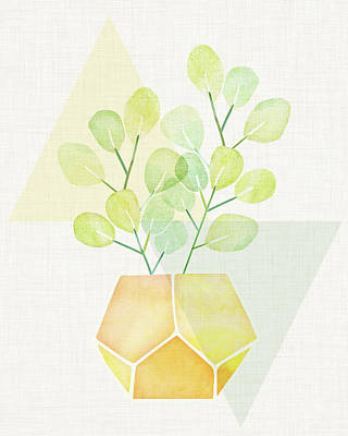 Kristian Gallagher Royalty-Free and Rights-Managed Images - Eucalyptus Geometric by Kristian Gallagher