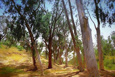 Digital Art - Eucalyptus Grove Oil Painting by Alison Frank